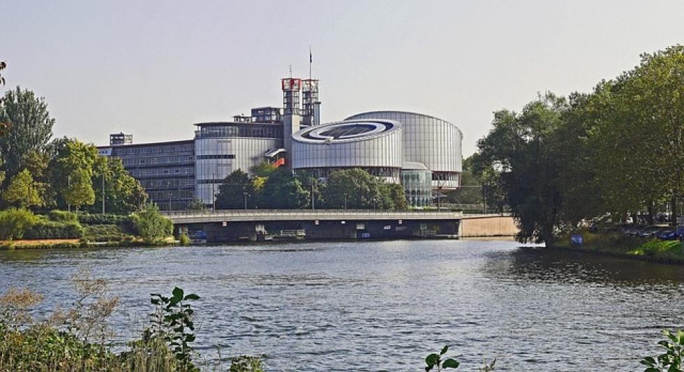 Ilustrační obrázek pro článek Evropský soud pro lidská práva