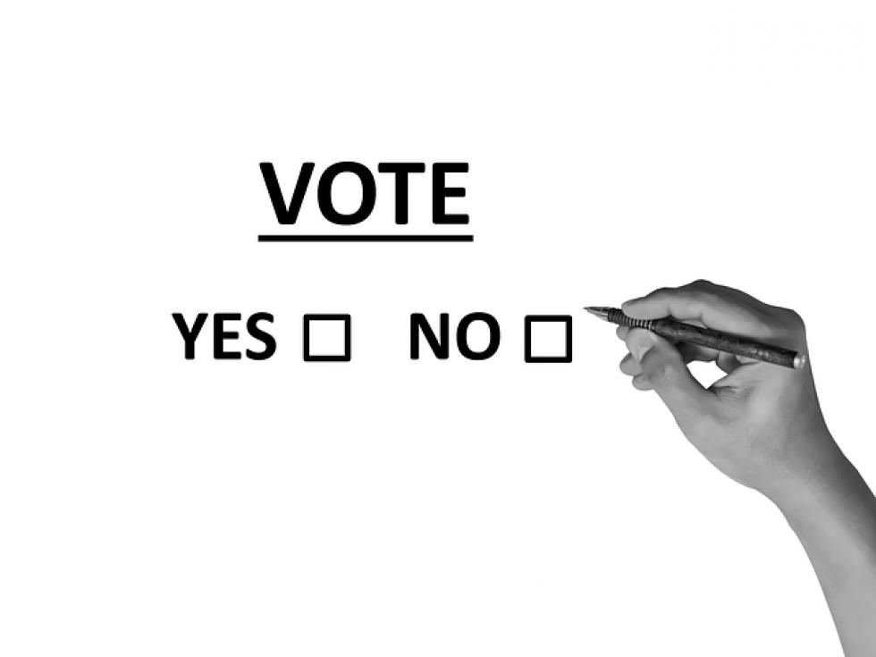 Ilustrační obrázek pro článek Referendum