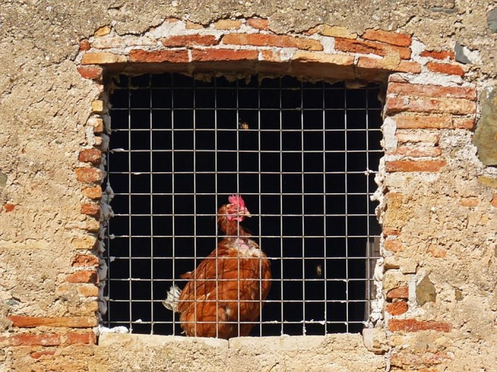 Ilustrační obrázek pro článek Zahlazení odsouzení a jeho podmínky