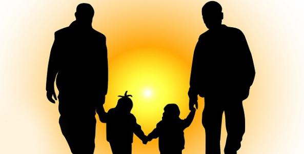 Ilustrační obrázek pro článek Může si v České republice registrovaný partner osvojit dítě?